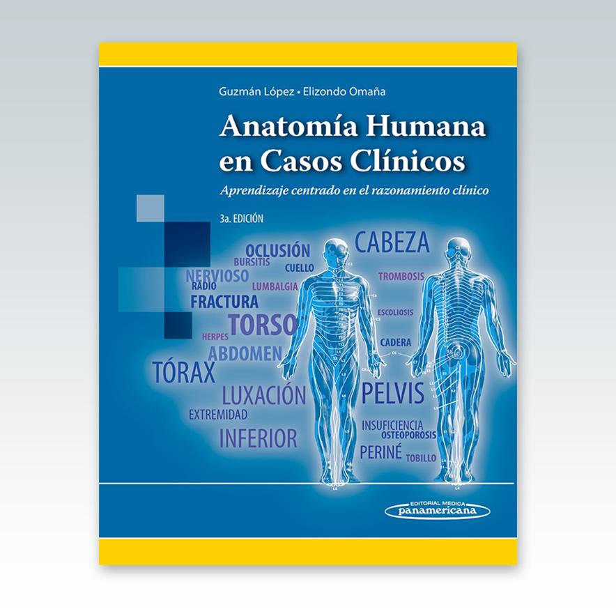 Lujo Ruedas Dental Fisiología Anatomía Y La Oclusión Foto - Anatomía ...